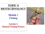 T6M1Lecture2General Cloning Process (1)