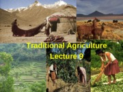 Lecture9_traditional agriculture