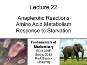Lecture-22 - Anaplerotic Reactions, Amino Acid Metabolism, Starvation