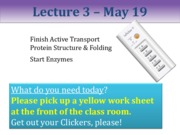 L3 May 19 proteins  students in class