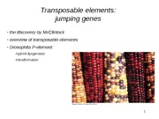 2013_04_02_transposons_bb