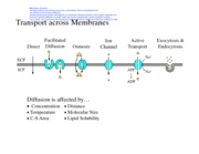 3-Membrane Dynamics Figs BW Corrected
