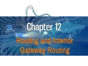 12-Routing and Interior Gateway Routing.pdf