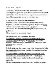 Chapter 3 Biomolecules Study Guide) (2).docx