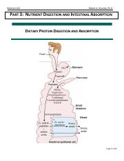 Part 3 - Nutrient Digestion and Intestinal Absorption.pdf