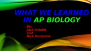 AP BIO Final Presention