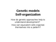 Lecture 11 - Self-organization, Meristems