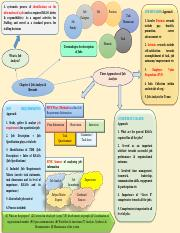 Mind Map for BRS2014 Chapter 4.pdf