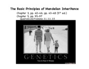 Lecture 4-The principles of Mendelian inheritance-F'15