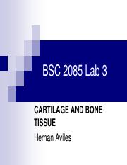 Lab3 Cartilage and Bone Tissue.pdf