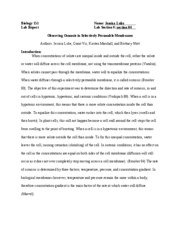 informative essays with two sources apa style Writing an apa style essay refers to writing it and formatting it if citing multiple make sure that you make it as informative as possible and.