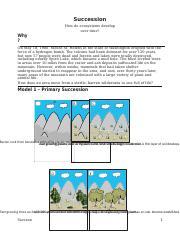 succession worksheets high school succession best free printable worksheets. Black Bedroom Furniture Sets. Home Design Ideas