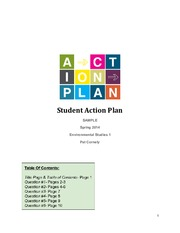 Example of Student Action Plan