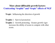 diffusable growth factors notes