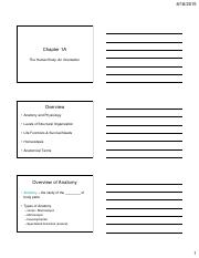 Chapter 1 Lecture - Printable.pdf