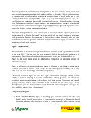 Report_on_agora_and_meena_bazar_final.docx