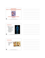 Kin Unit 2 Chapter 11 Lecture Notes