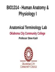 BIO1314 ANATOMICAL TERMINOLOGY LAB