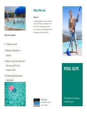 Pool guy brochure