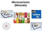 31. Micronutrients_4