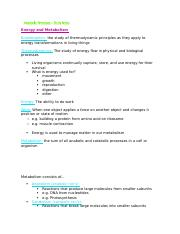 Metabolic Processes - study notes
