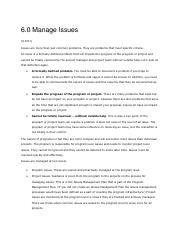 Project Management_Controlling Phase_Issue Management