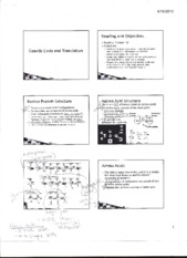 Genetic Code and Transition Notes