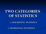 Mkt 202 Presentation - Two Categories of Statisics