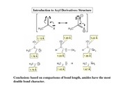 Introduction%20to%20Acyl%20Derivatives