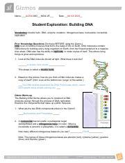 Building_DNA_Gizmo.pdf.docx - Name_Maria Gomez Date ...