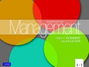 1. MGMT 310 Chapter 1 11 e MGT