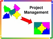 443_project_management