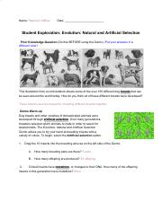 Evolution_ Natural and Artificial Selection Gizmo ...