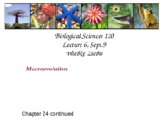 WZ Lecture 6, Sept. 9