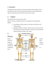 Skeletal and Muscular Systems Notes