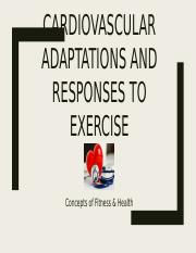 Concepts Cardiovascular Responses student version (3)