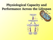 Exercise Physiology Chapter 6