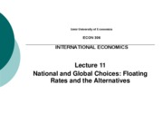 IEU - Lecture 11 - National and Global Choices
