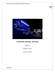 Sustainable Strategy.edited.docx