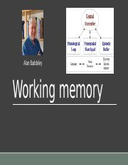 Working Memory.pptx