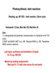 Topic36_photosynthesis_dark