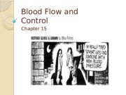 L12_Blood_Flow_&_Control_P1