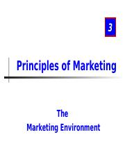 Marketing environment Lesson 2 2013.ppt