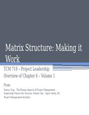 TCM 710 - Chapter 6 Matrix Structure Making it Work