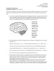 Assignment2_theBrain(1).docx