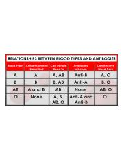 Blood-Types-table.png