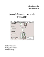 Mono and Di- hybrid Cross and Probability