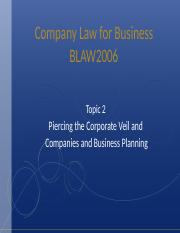 Topic 2 - Piercing the Corporate Veil and Company and Business Planning(2).ppt