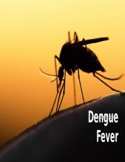 Dengue Fever(Finalized).pptx