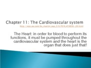 Chapter_11_The_Cardiovascular_system (1)